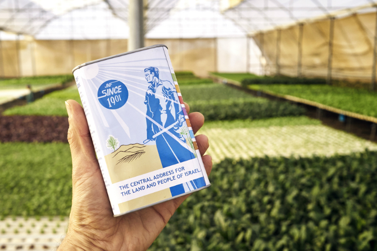 Blue Box Garden