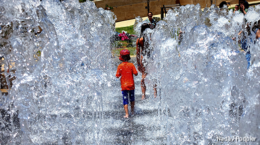Water Solutions & Israel's Water Economy
