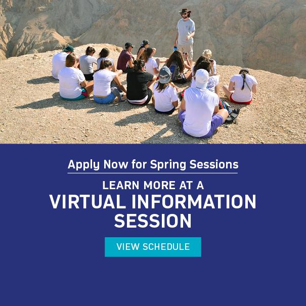 AMHSI Spring Virtual Info Sessions