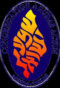 CAA_logo_vector