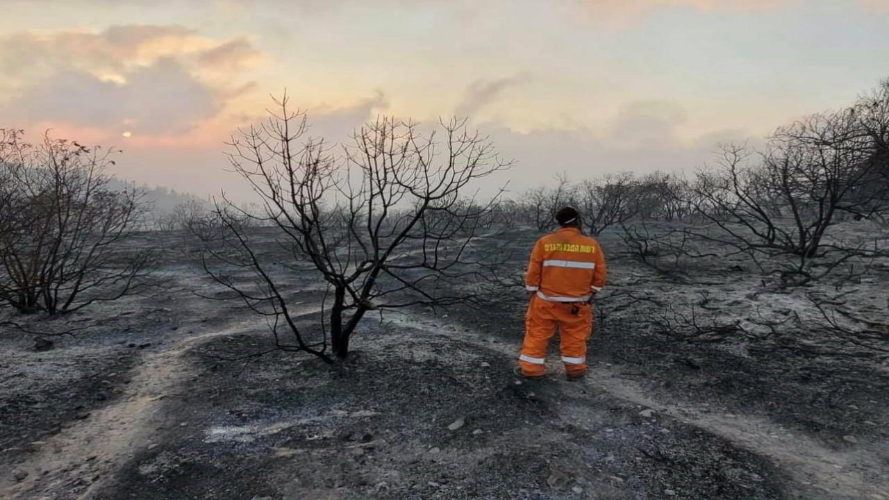 Firefighter surveys damage from wildfire near Jerusalem