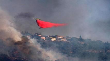 Jerusalem Fires 3